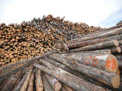 Biomassa-compressor